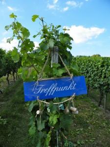 Treffpunkt Wein
