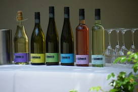 Weinprobe bei Wein von 3 im Barockschloss Zeilitzheim
