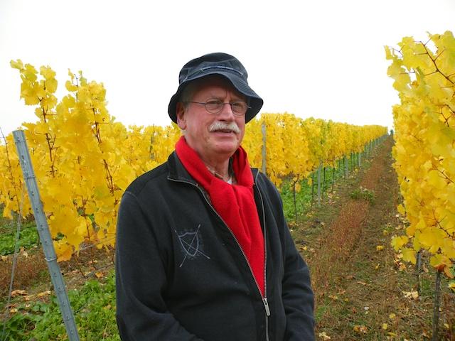 Bauke van Halem bei der Rieslingsweinlese 2012